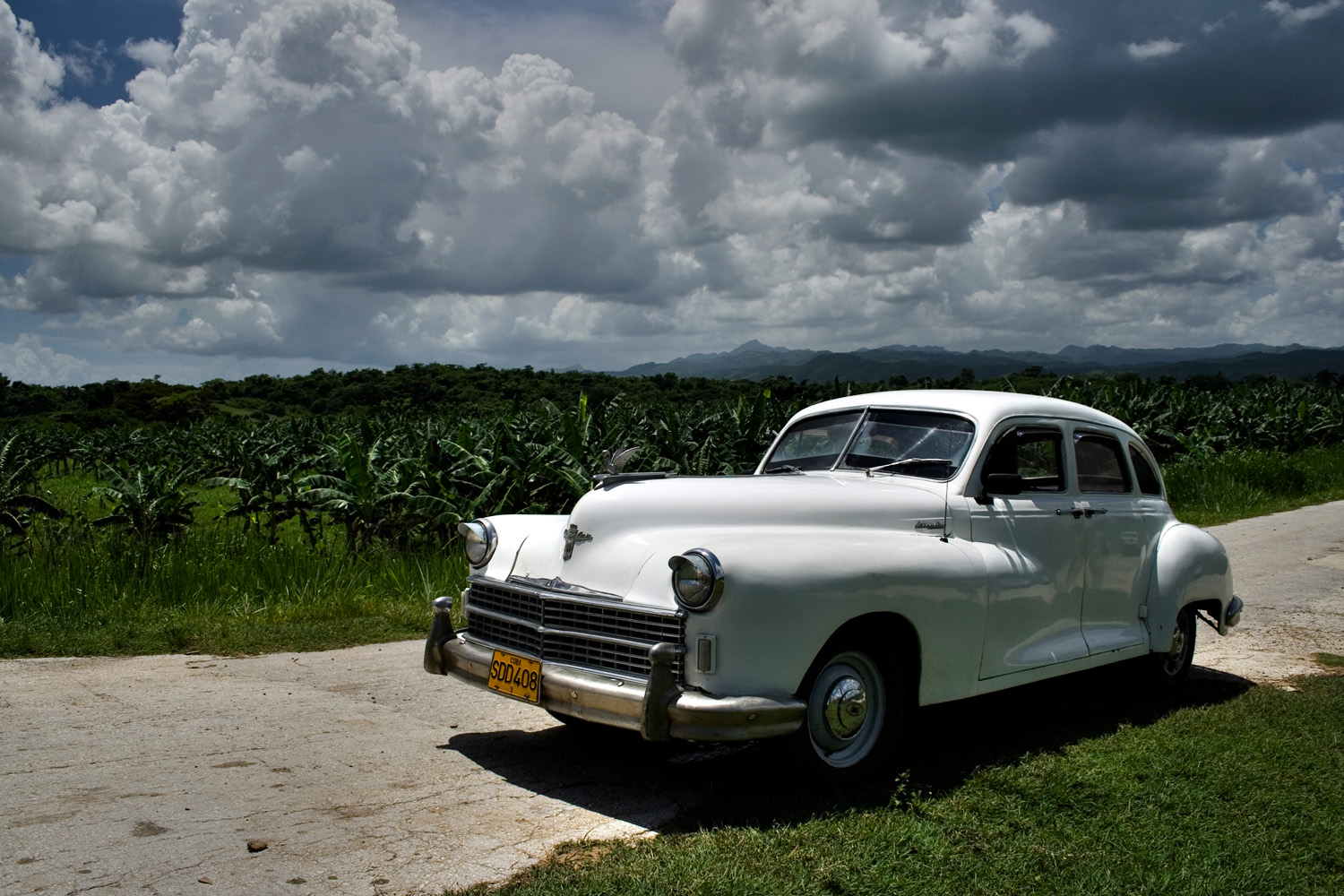 Old car and sugarcane, Cuba (Andy Webb)