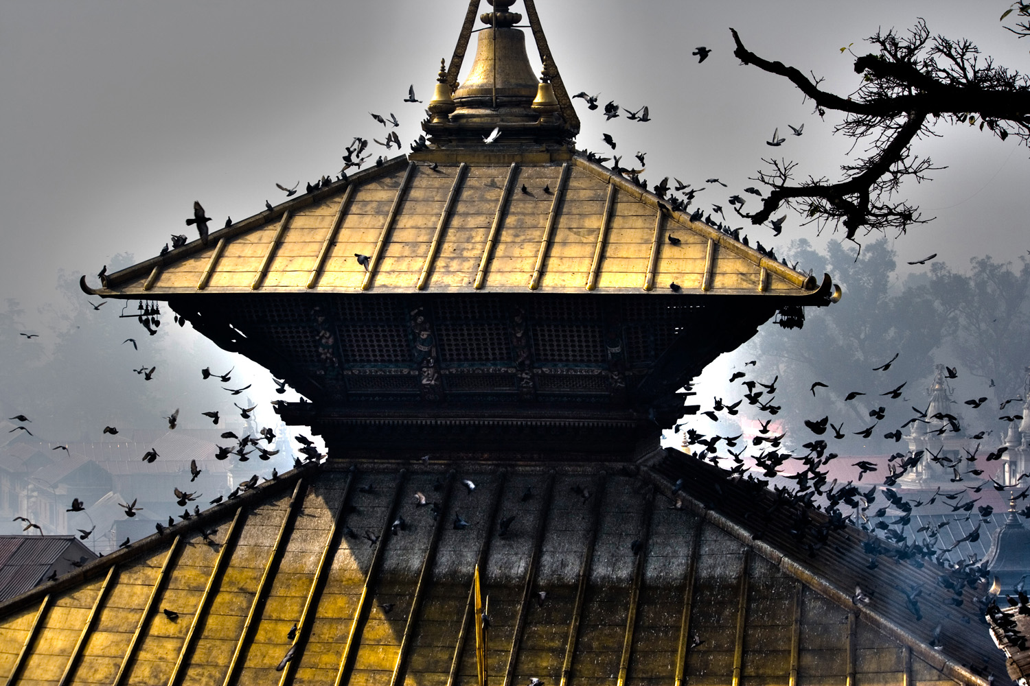 Nepalese temple (Andy Webb)